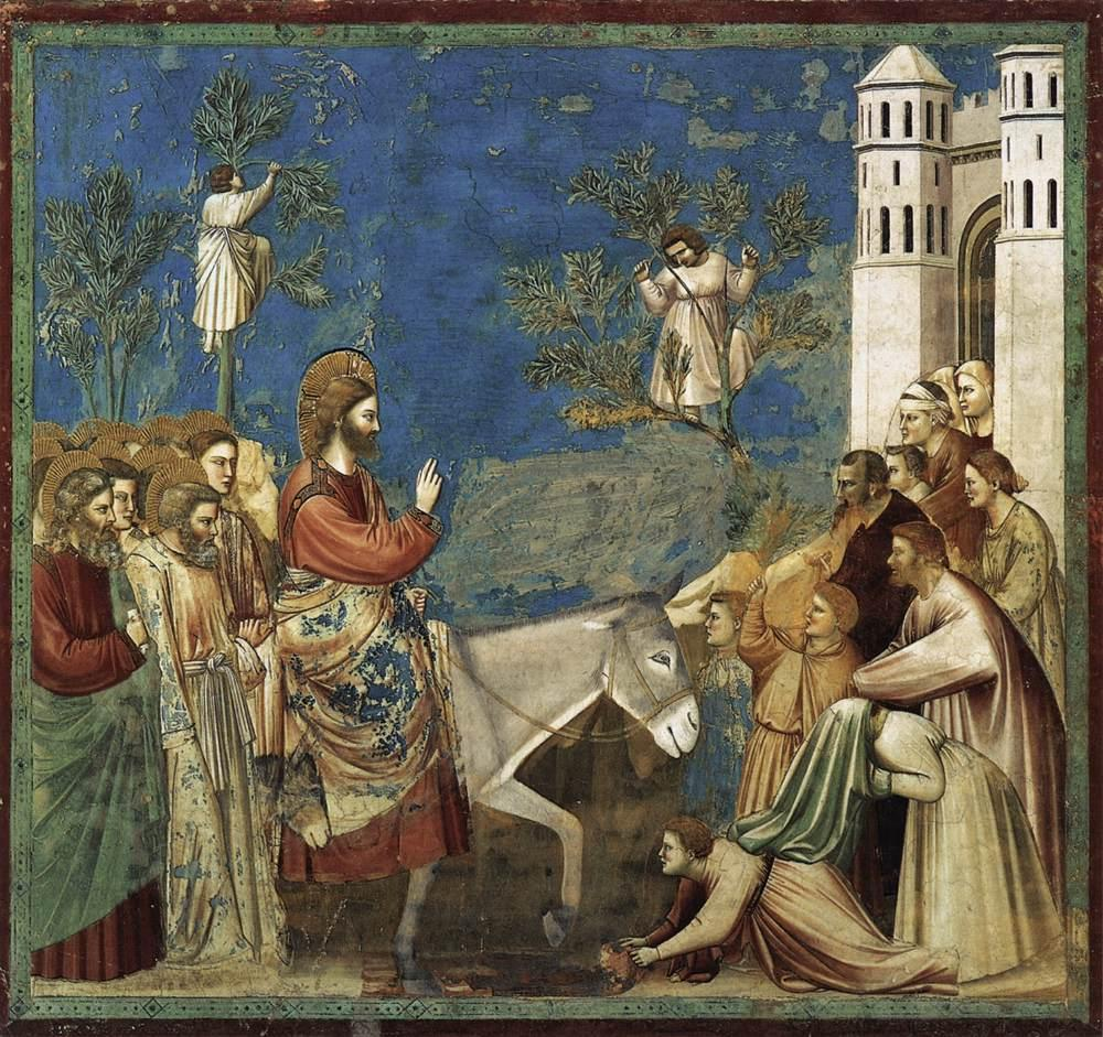 Giotto di Bondone - No. 26 Entry into Jerusalem - WGA09206