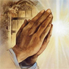 Prayer-palms-1
