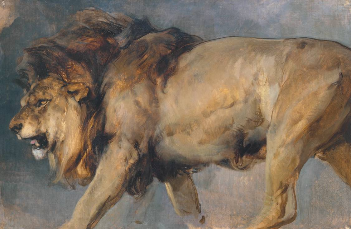 Sir Edwin Henry Landseer 1802-1873. Study of a Lion-2