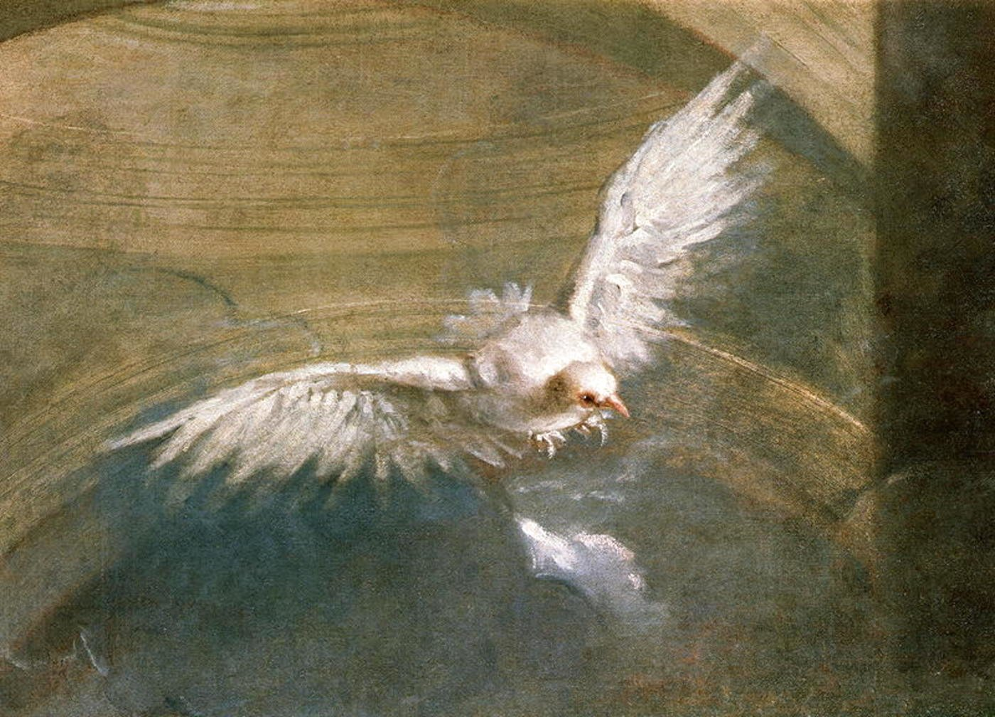 The Dove of the Holy Spirit - Sebastiano Bombelli